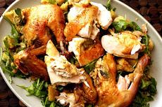 zuni cafe's roasted chicken + bread salad