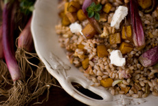 Farro and Roasted Butternut Squash