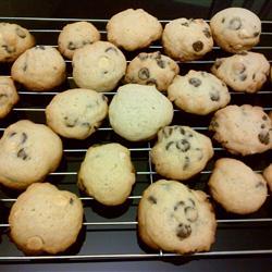 Best Ever Chocolate Chip Cookies III