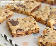 Toasted Marshmallow Tagalong Peanut Butter Cake Bars