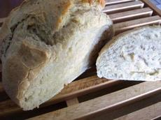 Enjoy No-Knead, Fridge-Friendly Dough Healthy Bread-In 5 Minutes