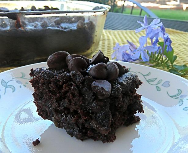 Allergy Friendly Double Chocolate Brownies
