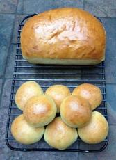 Japanese Milk Bread or Rolls With Sourdough