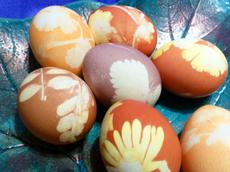 Onion and Herbs Dyed Easter Eggs