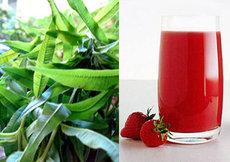 Strawberry and Lemon Verbena Summer Drink